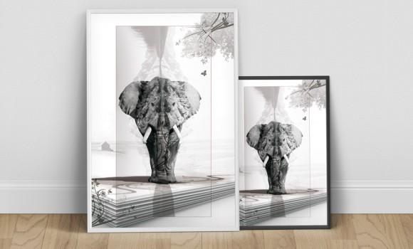 Un éléphant cela trompe énormément !