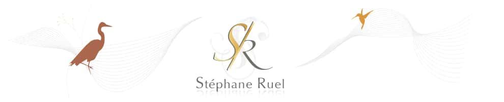 Stéphane Ruel – Graphiste Webdesigner Photographe en Avignon Logo